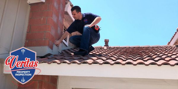 Home Roof Chimney Inspector