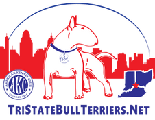 Tri State Bull Terriers