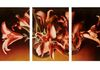 "Lilies of the LIght   30"" x 64""   $4,500.00"