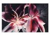 "Lily Drama  30""x48""  $4,500.00  SOLD"
