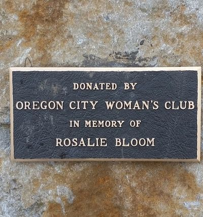 Dedication for bench in memory of  Rosalie Bloom bench at Richard Bloom Tot's Park.