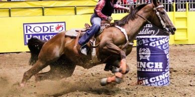 Professional Barrel Racer Rodeo Naked Sponsored Rider Competing in Rodeo