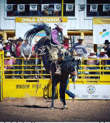 Rank Saddle Bronc Ride By Sponsored Rider on a Bucking Horse in the Pro Rodeo