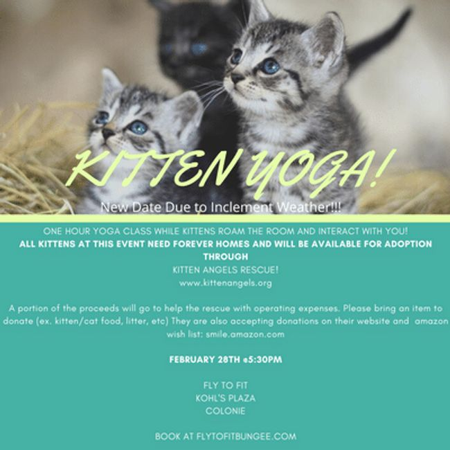 KITTEN YOGA HAS BEEN RESCHEDULED TO FEB. 28TH @ 5:30PM