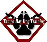 Tampa Bay Dog Training