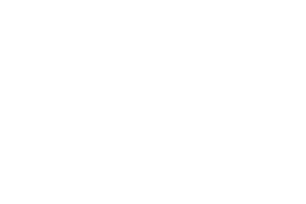 LOST CYCLE
