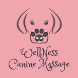 Wellness Canine Massage