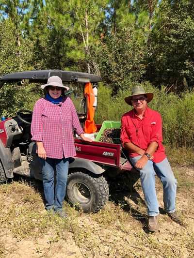 Tracy & Curtis Poling owners Woodpecker Trail Olive Farm