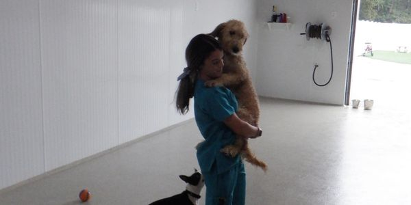 Canine Caregiver Brittany holding a goldendoodle puppy.