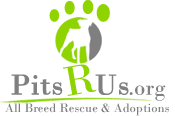 Pits R Us All Breed Rescue & Adoptions