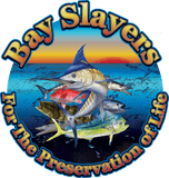Bay Slayers Marine Consultants