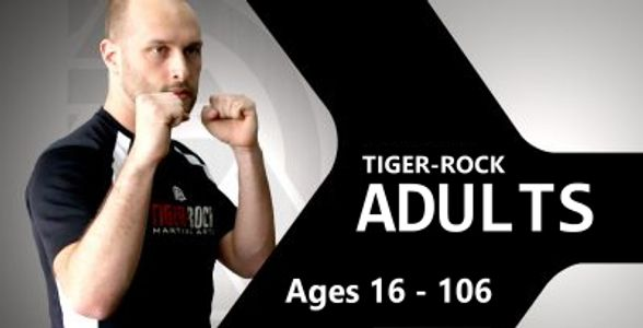 Martial Arts for adults, Taekwondo for adults, Karate for adults. Free trial.