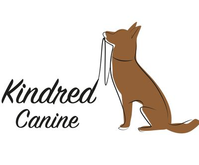 Kindred Canine Dog Walkers Andover