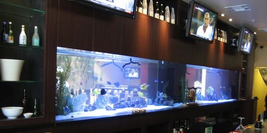 Large aquarium in restaurant