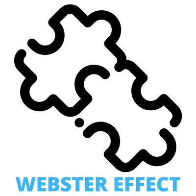 Webster Effect LLC