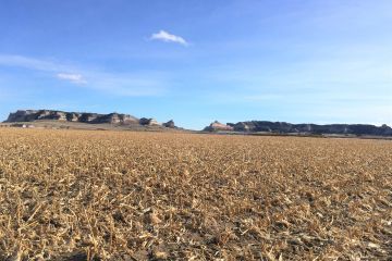 78 acres of Farmland For Sale west of Scotts Bluff National Monument.