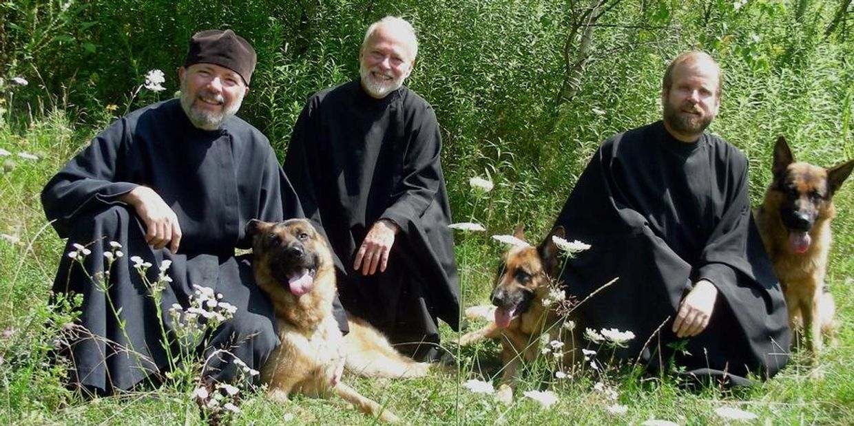 Monks and German Shepherd dogs