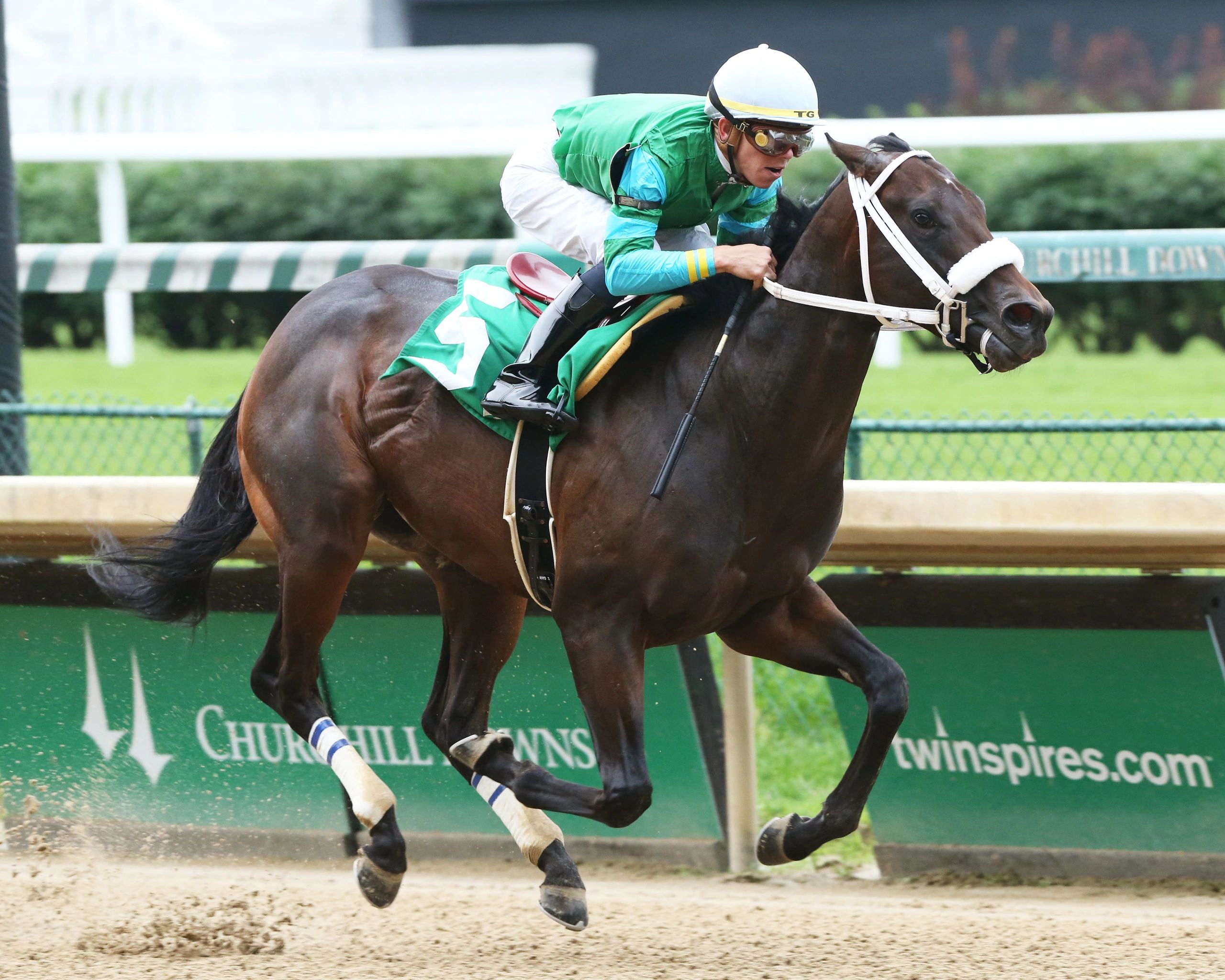 Hancock brothers could pull off Churchill stakes sweep