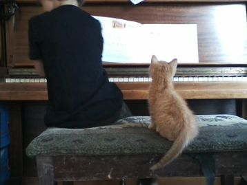 Piano Lesson by Natalie Cox