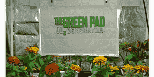 CO2 PAD IN GARDEN