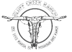 Bluff Creek Ranch -WARDA, TX