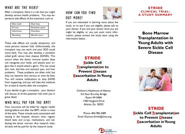Stride HCT Bone Marrow Transplant Study Brochure (Phase I)
