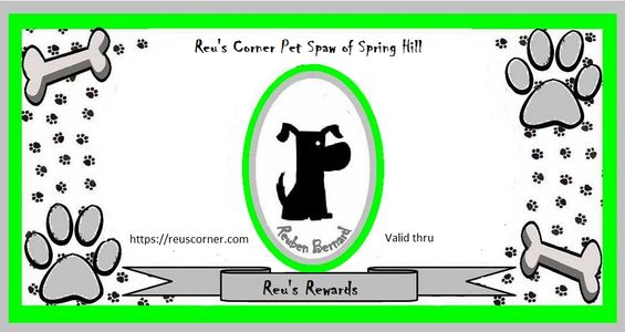 Reu's Rewards Cash with dog in center, paw and bones in corners.  Coupon for purchase of our tees.