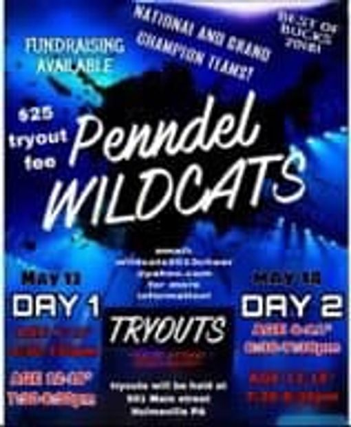 Tryout info If you missed tryouts and still interested please send us an email Wildcats2013cheer@yah
