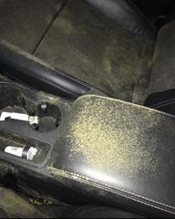 Mold and Mildew in client's vehicle