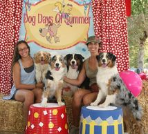 Fun memory with our dogs!