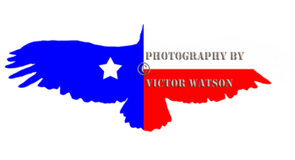 Schertz Photography School & Studio