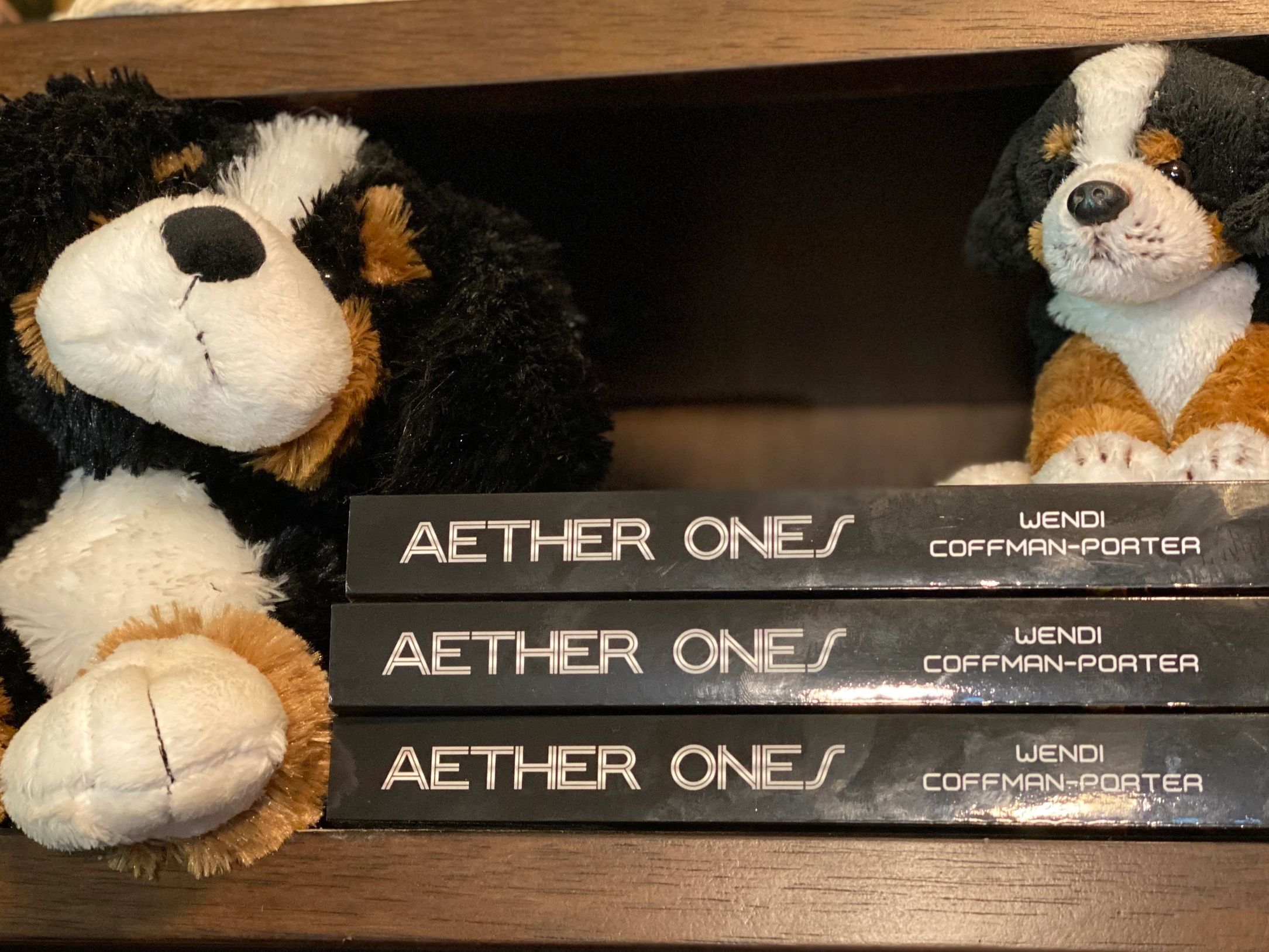 Book shelf with Bernese and Aether Ones