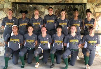 Shamrocks 16U Premier | Shamrocks Girls Fastpitch Travel Softball