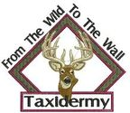 From the Wild to the Wall Taxidermy