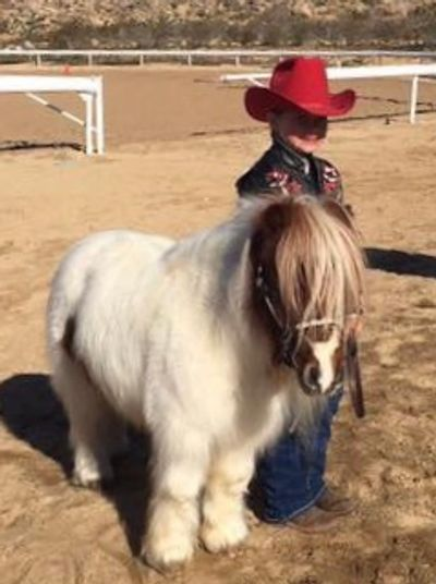 Coral Krig won First Place in Calss #8 - Fuzziest Pony/Mini