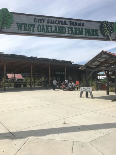 City Slicker Farms West Oakland Farm Park is such an amazing escape oasis in a heavily industrial and newly built housing in Oakland.