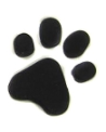 Happy Paws Dog Walking and Related Services