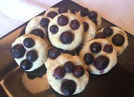 Blueberry Dog Treats, Dog treat recipes, Four Seasons For Paws