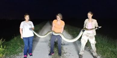Python catches and more caught on video!