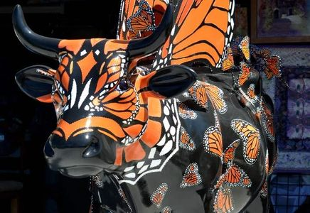 Moo Monarch Butterfly Cow for Cow Parade SLO.  Giant lifesize cow designed as a Monarch Butterfly.