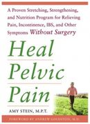 Heal Pelvic Pain Amy Stein DPT