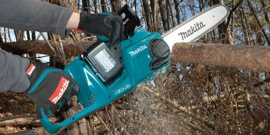 Rhode Island Battery Power Chainsaws