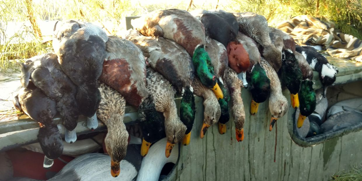 Duck hunting, Currituck County, North Carolina, Virginia, Fourth Generation Outfitters