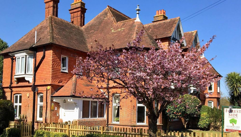 bed & breakfast in Lyndhurst, New Forest