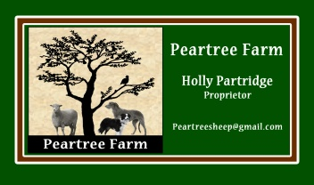 Peartree Farms  Teeswater sheep   & scottish  DEERhounds