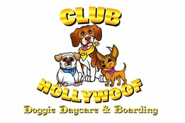 Club HOLLYWOOF INN & Suites Doggie Daycare and Boarding
