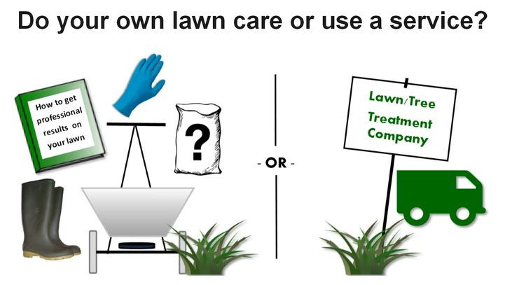 Should I do my own lawn care or use a lawn care service?