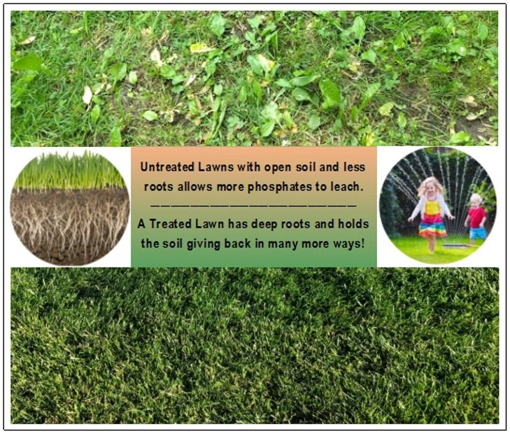 Untreated lawn has visible soil & Treated lawn with deep roots holding the soil in place much better