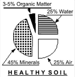 Healthy Soil with proper amount organic matter