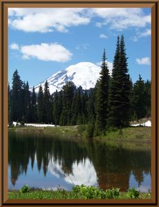 Mt Rainier reflected in Tipsoo Lake in Mt Rainier National Park